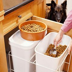 food storage dog
